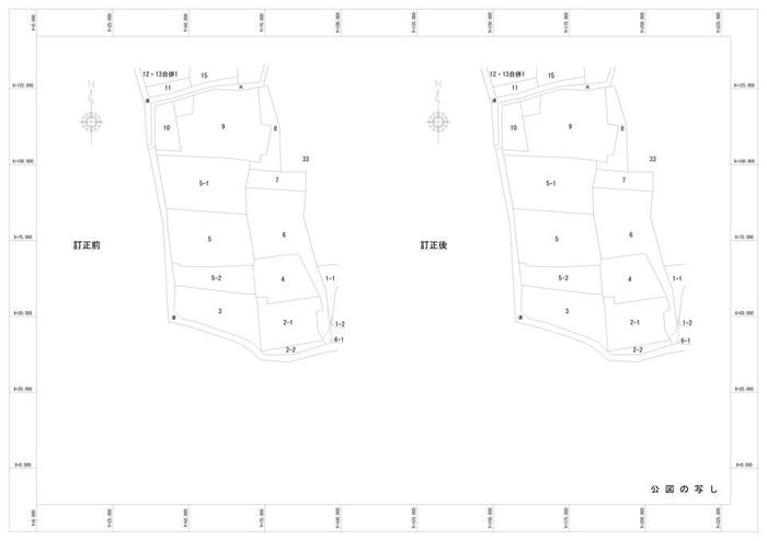 CADPage17.jpg